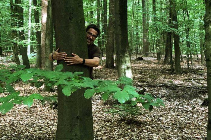 Baum René Schneider Wald