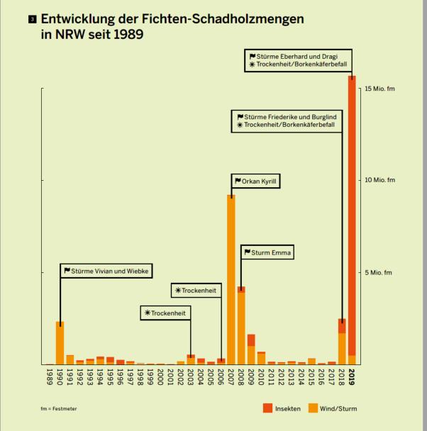 Wald ist gestresst: Schäden seit 1989