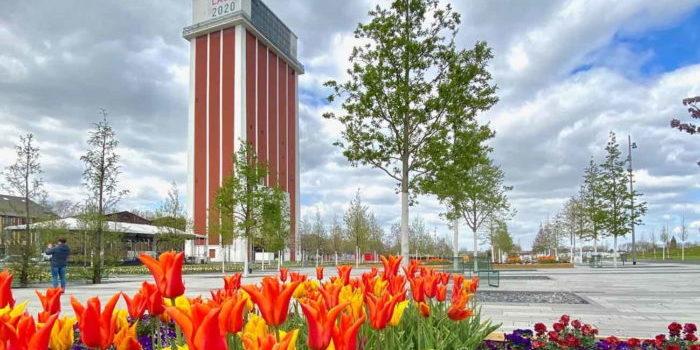Blick über blühende Tulpen auf den Zechenturm des Landesgartenschau 2020.